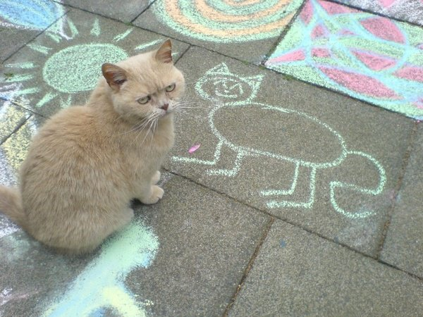 cat drawing 1.jpg