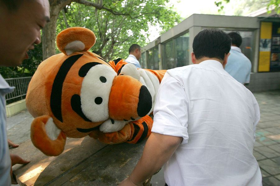 escaped-tiger-training-exercise_6001.jpg